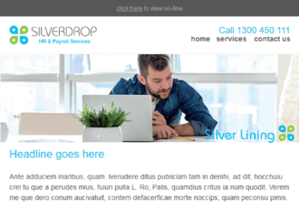 Silverdrop | HR and Payroll Consultant